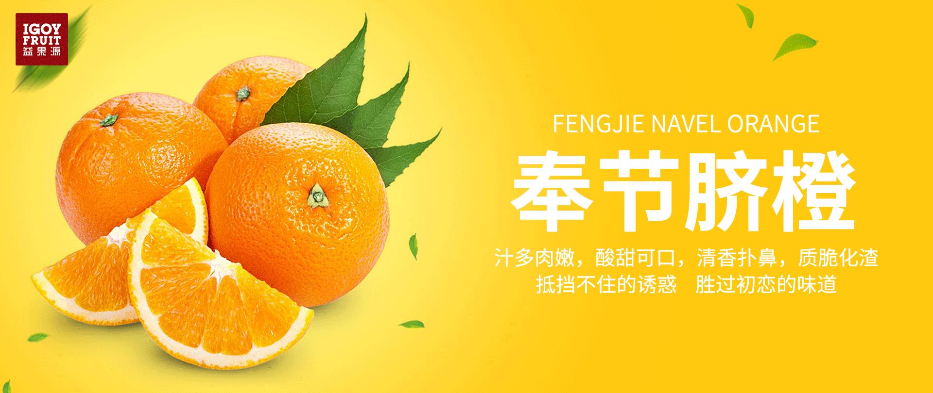 banner3_万博官方manbetx下载万博manbetx官方网站万博max手机客户端下载生活馆